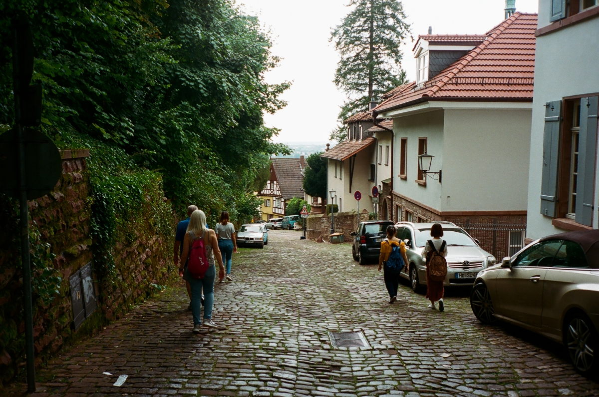 Downhill - Heidelberg, Germany