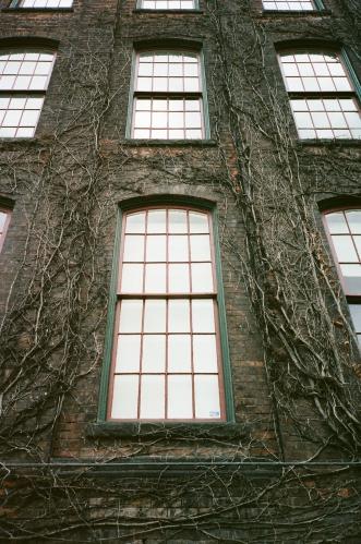 Windows Toronto, CA 35mm