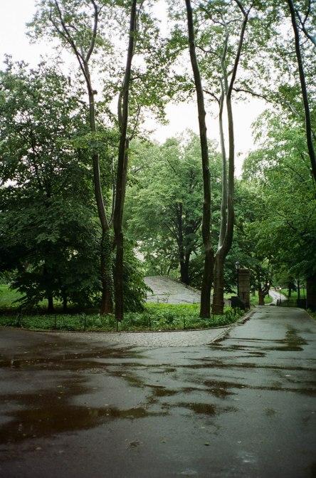 Central Park Rain-2
